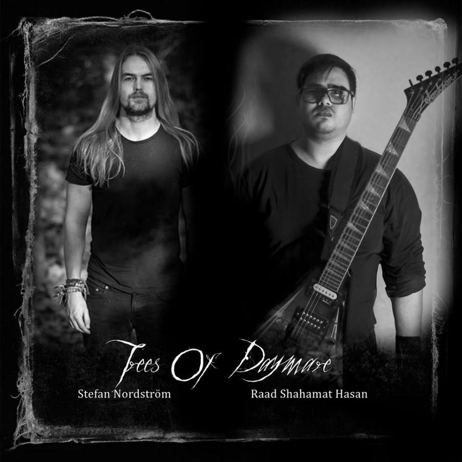 Новый сингл Trees Of Daymare